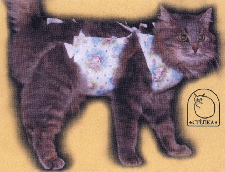 Как сделать повязку коту