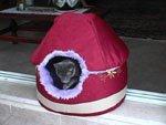 http://www.kitty.ru/Made/CatsBed/DVC01135_m.jpeg