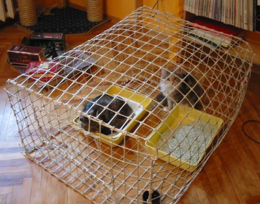 Клетки для кошек своими руками